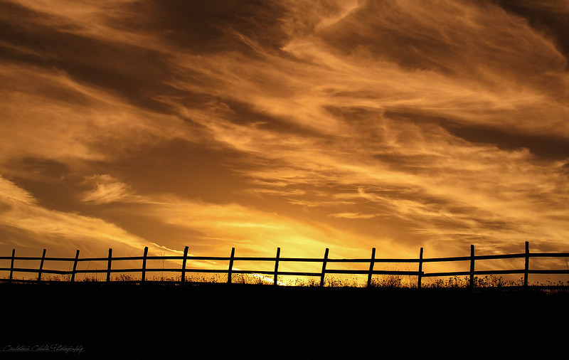 Fenced from the sunset