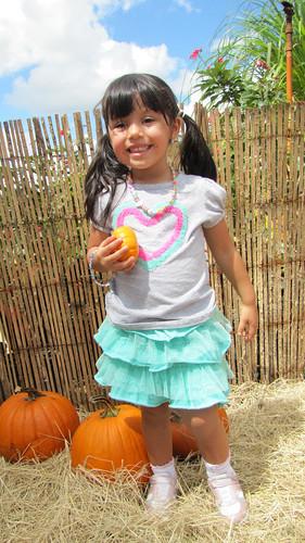 Pumpkin Patch 2012 by alexthoth