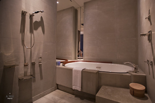 Bathtub and Enclosed Shower