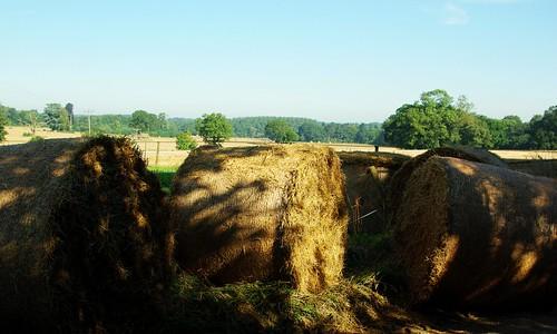 20120908-03_Hay Bales - Rotoballe_Home Farm_Hatton by gary.hadden