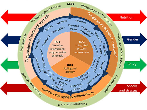 Africa RISING research framework