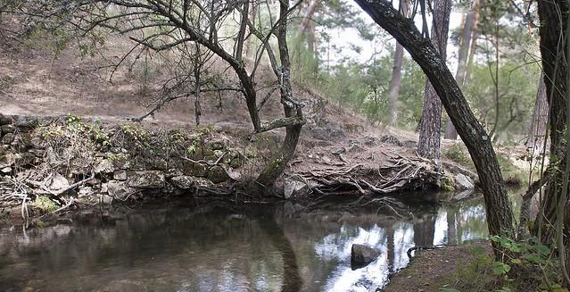 Río Eresma #4