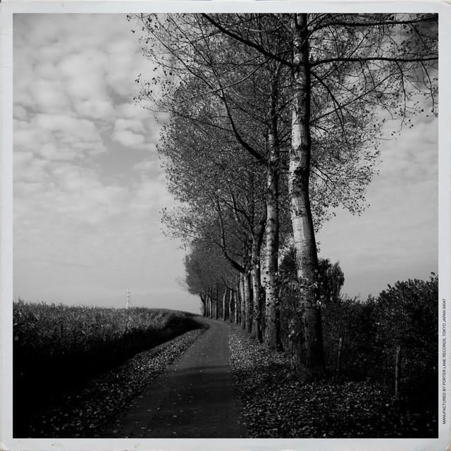 Wander in memories