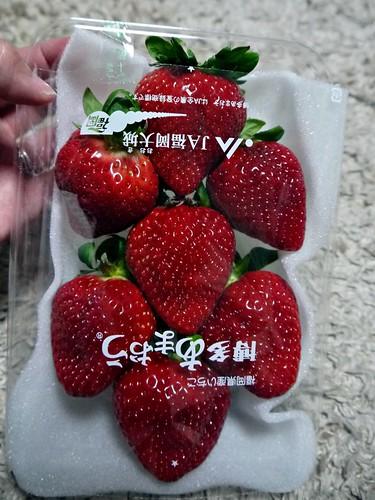 hakata strawberry
