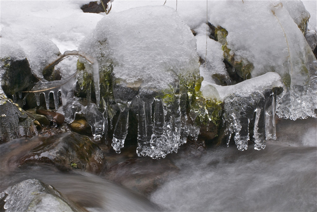 Ice on Munson Creek