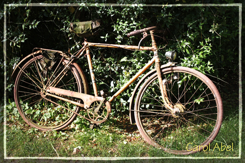 PAF-derelict-rusty-bicycle-w