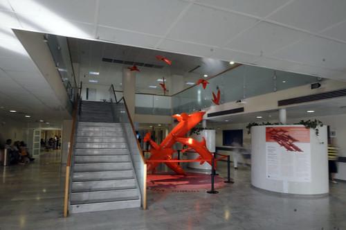 Moby Dick, Workshop, Esteban Ruiz delfines Art Therapy