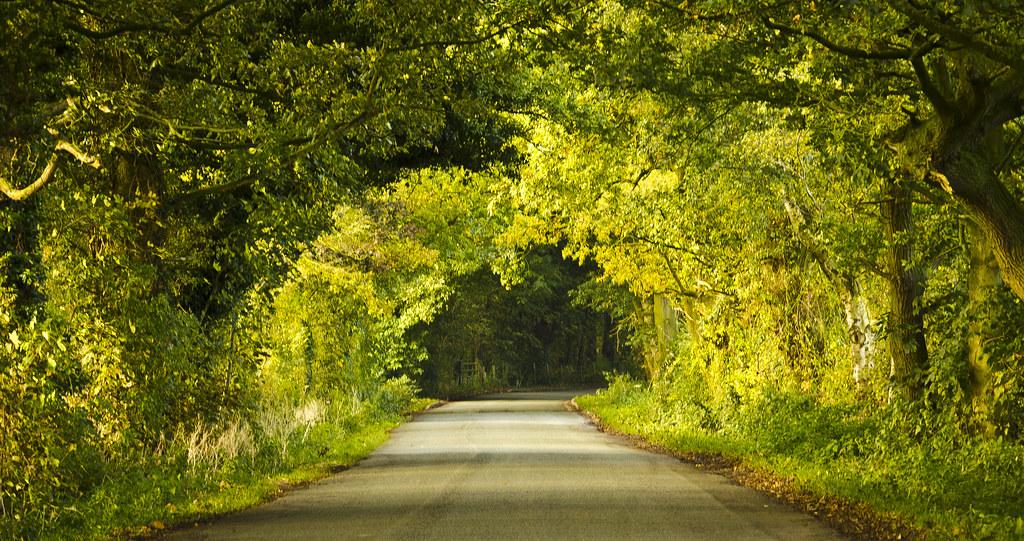 Road in Neston