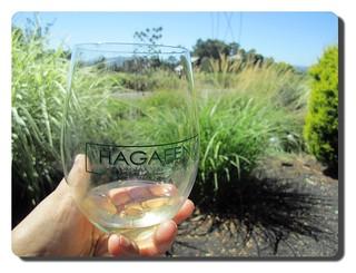 Wine country: California's Sonoma and Napa Valley