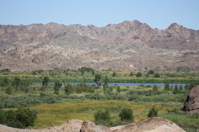 Colorado River, Picacho SRA