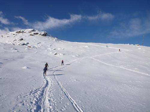 La disciplina della neve
