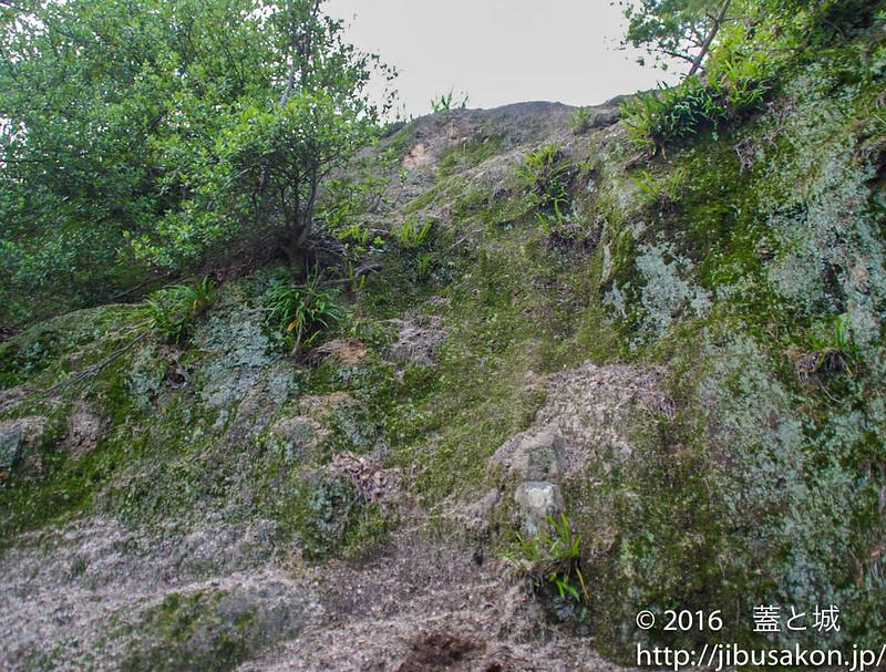 主郭への崖