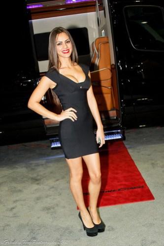 LA Auto Show 2012-71.jpg