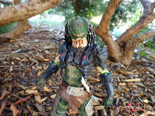 The Lost Predator
