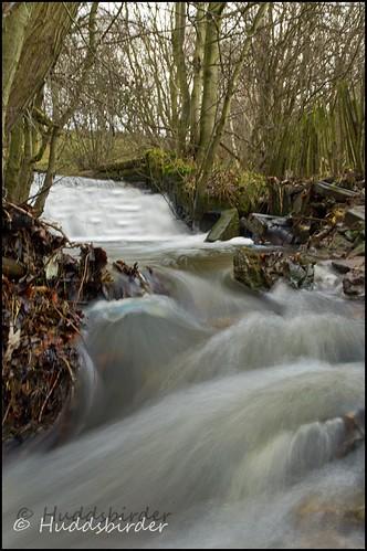 Brook in Full Flow