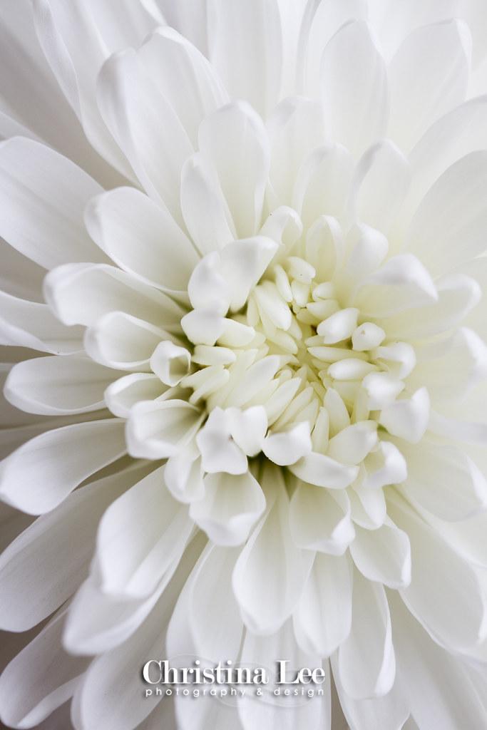 whitemum5