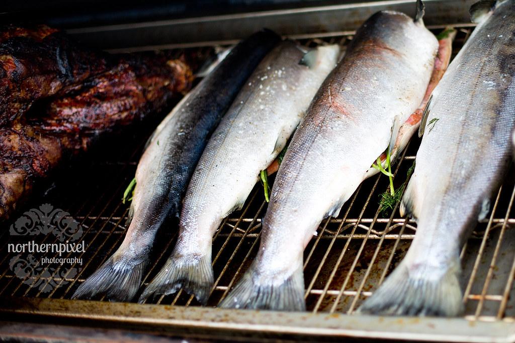 Salmon Feast