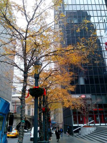 Late autumn morning on Park Ave