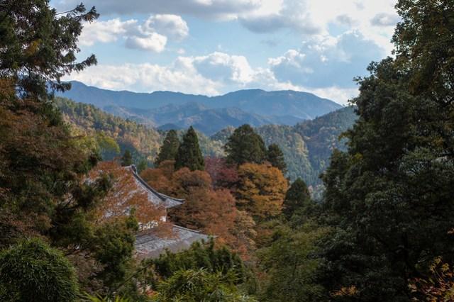 On top of Mount Kurama