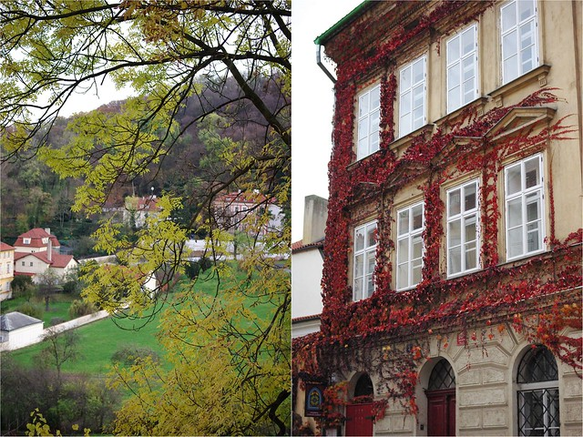 Natural Praha