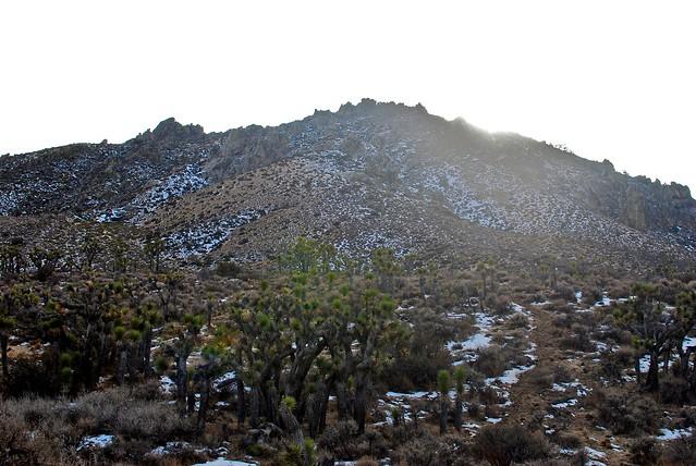 Walbrecht Peak