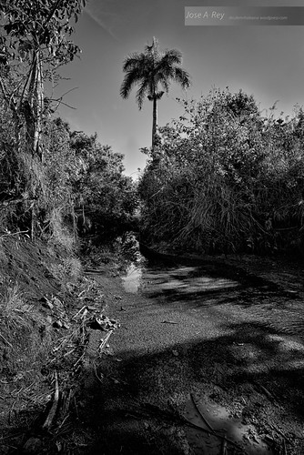 Cuba landscape... Pinar del Rio by Rey Cuba