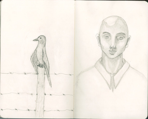 Bird and bald