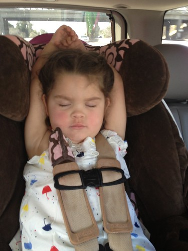 sleeping on the way to Disneyland