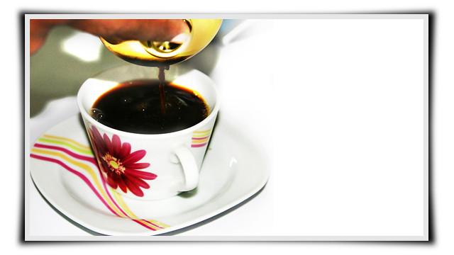 Perfect Kopi Luwak Coffee with French Press, hidangan kopi luwak