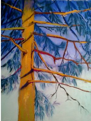 20121231_step7_pine