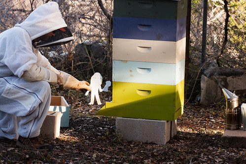 Flat Stanley the Beekeeper