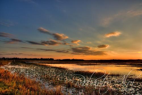 Arthur J Marshall Landscape 2 by Roberto_Aloi
