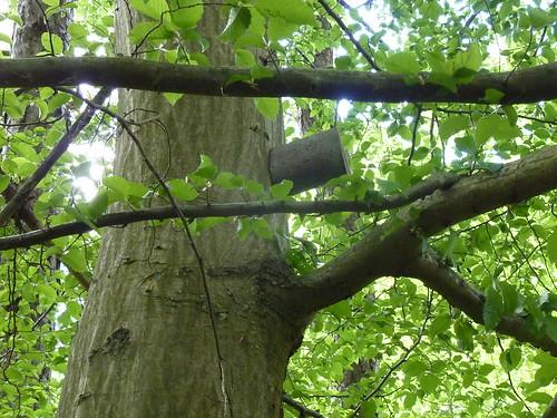 géocache branche