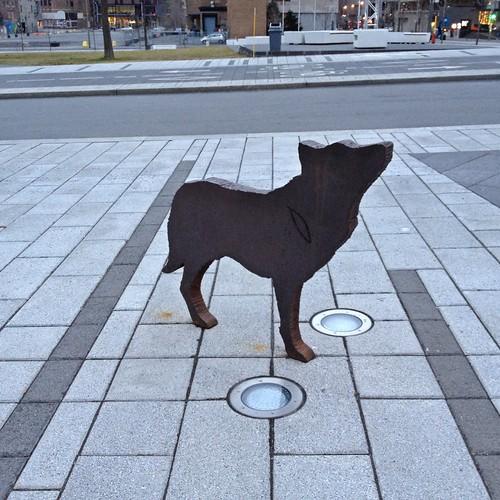Animal en deux dimensions