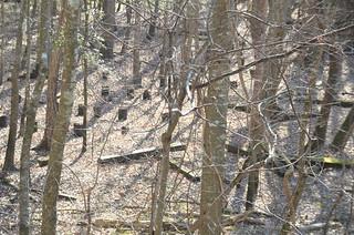 LCU Swamp Stomp 2013-061