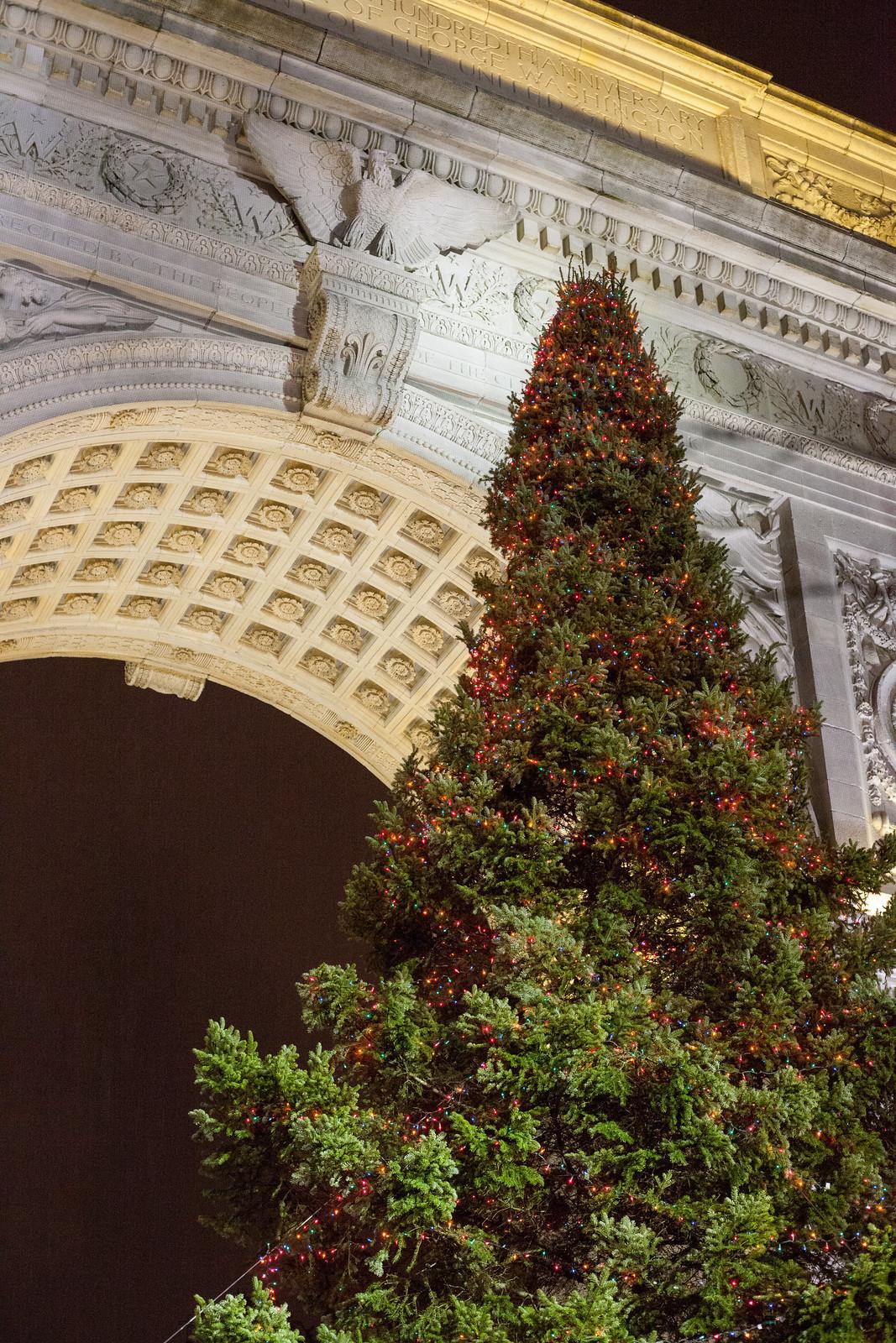 Christmas Tree at the Washington Arch by wwward0