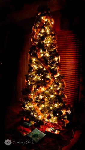 "13. ""Christmas Tree"" by courtneyec90"