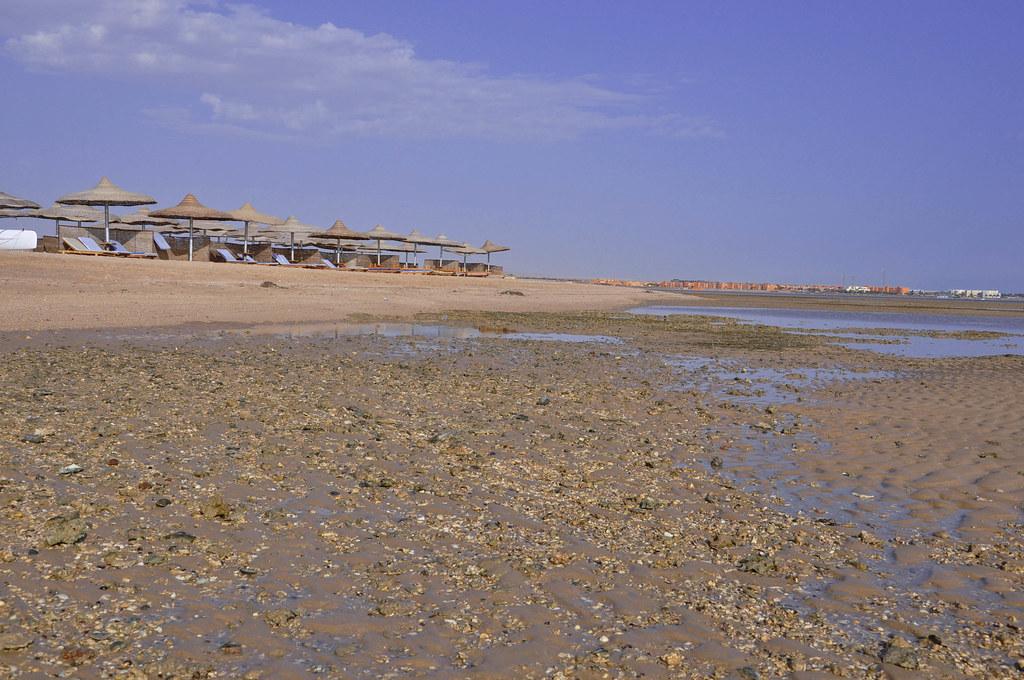 Soma Bay, Red Sea, Egypt 7