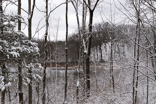 Winter Wonderland - kame