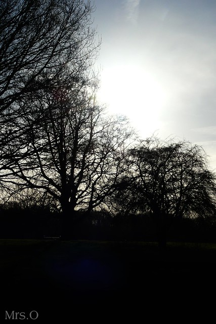 Bedford's Country Park