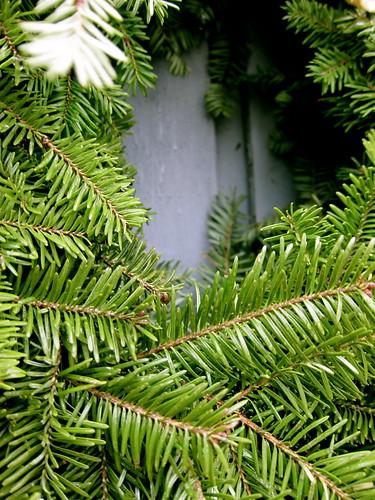 12.21.12 Winter Solstice