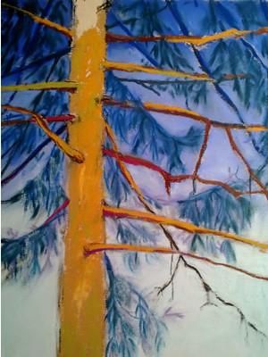 20121231_step6_pine