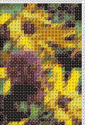 Black Eyed Susan & Allium Patchwork