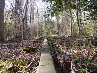 LCU Swamp Stomp 2013-037
