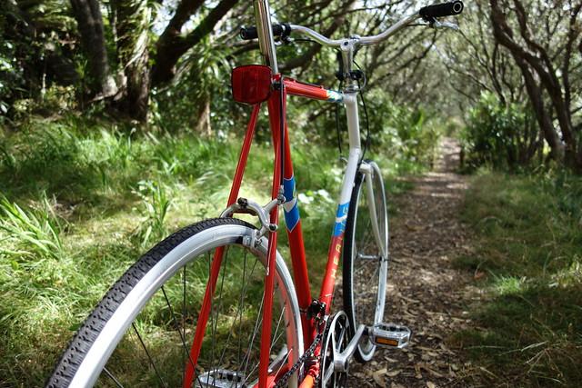 Back Road Bike