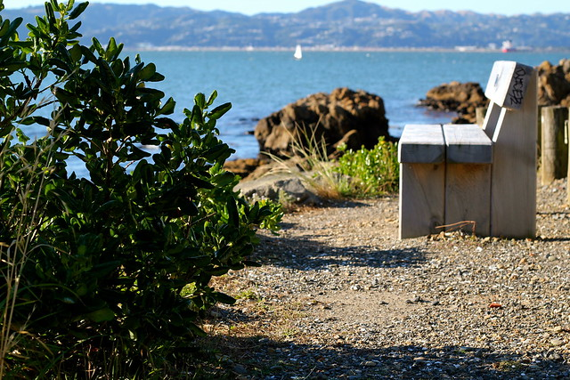 Thursday: I always wish I had time to sit on this seat by the sea