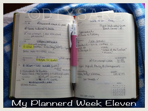 My Plannerd Week Eleven