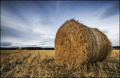 Culloden - Straw Bales.