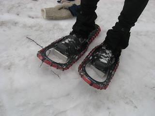 snowshoes Mount Greylock