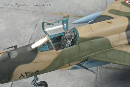 Mig-122 (Large)